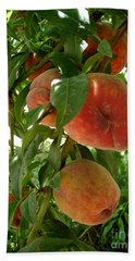 Hand Towel featuring the photograph Peaches On The Tree by Kerri Mortenson
