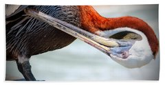 Pelican Itch Hand Towel by Cynthia Guinn