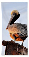 Pelican Looking Back Hand Towel by AJ  Schibig