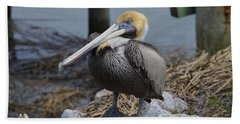 Pelican On Rocks Hand Towel