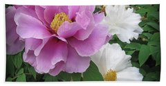 Peonies In White And Lavender Hand Towel