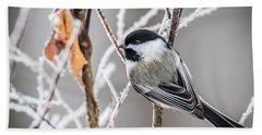 Perched Black Capped Chickadee Hand Towel