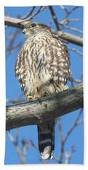Perched Merlin Hand Towel