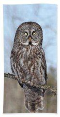 Bath Towel featuring the photograph Perching Perfect by Heather King