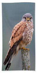 Perching Hand Towel by Torbjorn Swenelius
