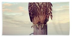Peregrine Falcon  Hand Towel
