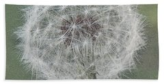 Perfect Dandelion Hand Towel