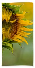 Hand Towel featuring the photograph Petals by Ronda Kimbrow
