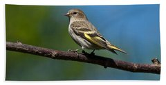 Pine Siskin Perched On A Branch Bath Towel