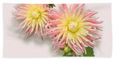 Pink And Cream Cactus Dahlia Bath Towel by Jane McIlroy