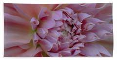 Pink Dahlia Bath Towel by Jacqui Boonstra