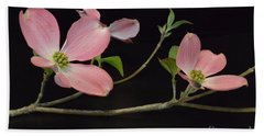 Bath Towel featuring the photograph Pink Dogwood Branch  by Jeannie Rhode