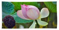 Pink Lotus Hand Towel by Savannah Gibbs