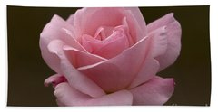 Hand Towel featuring the photograph Pink Rose by Meg Rousher