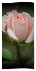 Pink Tea Rose Bath Towel