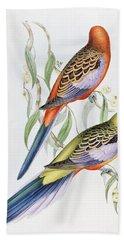 Platycercus Adelaidae From The Birds Of Australia Hand Towel