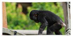 Playful Young Monkey Bath Towel