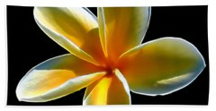 Plumeria Against Black Bath Towel by Pamela Walton