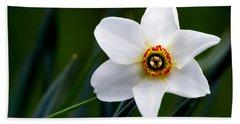 Poet's Daffodil Bath Towel