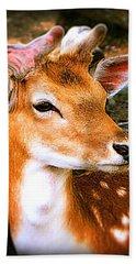 Portrait Male Fallow Deer Hand Towel