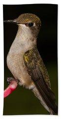 Portrait Of A Hummingbird Bath Towel by Brian Caldwell
