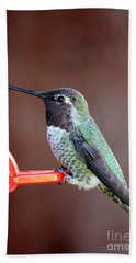 Portrait Of A Hummingbird Bath Towel