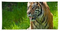Portrait Of A Sumatran Tiger Hand Towel by Jeff Goulden