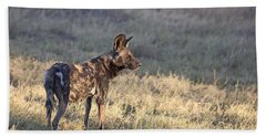 Bath Towel featuring the photograph Pregnant African Wild Dog by Liz Leyden