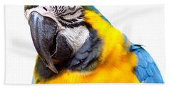 Bath Towel featuring the photograph Pretty Bird by Roselynne Broussard