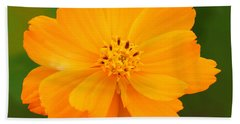 Hand Towel featuring the photograph Pretty In Orange by Mariarosa Rockefeller
