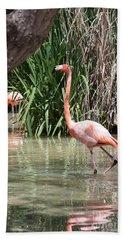 Pretty In Pink Hand Towel by John Telfer