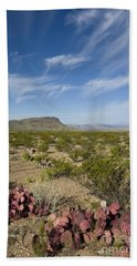 Prickly Pear In Chihuahuan Desert, Texas Hand Towel