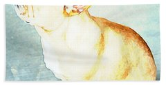 Profile In Frenchie Hand Towel by Barbara Chichester