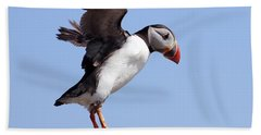 Puffin In Flight Hand Towel