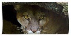 Puma Hand Towel by Bob Hislop