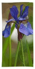 Purple Bearded Iris Watercolor With Pen Bath Towel