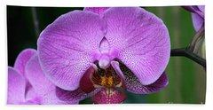 Purple Phalaenopsis Orchids Hand Towel