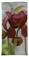 Bath Towel featuring the photograph Purple Pitcher Plant by Betty Denise