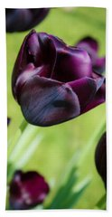 Queen Of The Night Black Tulips Hand Towel