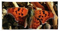 Hand Towel featuring the photograph Question Mark Butterfly by Donna Brown