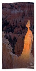 Rabbit Sunset Point Bryce Canyon National Park Hand Towel