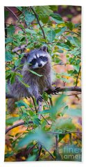Raccoon Hand Towel by Inge Johnsson