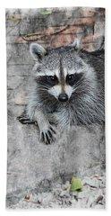Racoon Hand Towel