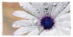 Rain Soaked Daisy Hand Towel