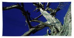 Hand Towel featuring the photograph Reach For The Sky by Janice Westerberg