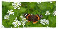 Hand Towel featuring the photograph Red Admirals by Lingfai Leung