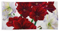 Red And White Amaryllis Hand Towel
