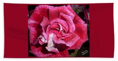 Red Beauty 2  Hand Towel