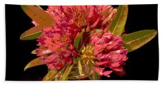 Red Clover 1 Hand Towel