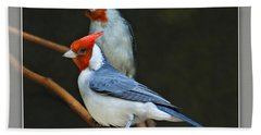 Red-crested Cardinal Bath Towel